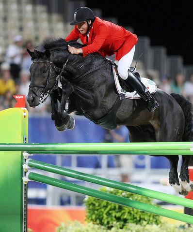 Horse_Zorro-big
