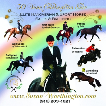 Rainbow Equus Meadows Susan Worthington Elite Hanoverian and Sport Horse Breeding and Sales