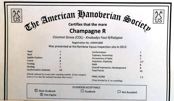 ChampagnePapers.jpg